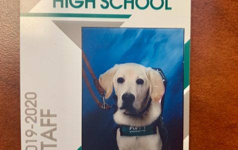 Jesuit's New Guide Dog