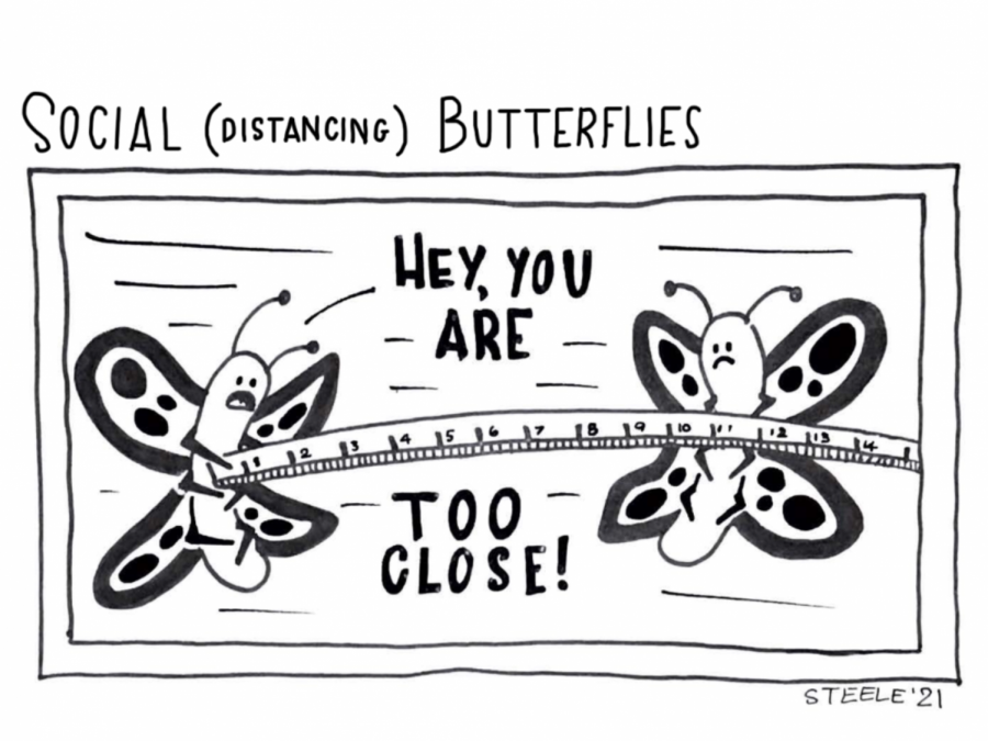 Steele Comic: Social Distancing Butterflies