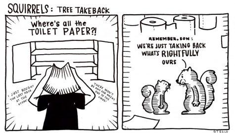 Squirrels: Tree Take Back