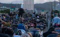 Protesters staging a die-in on Portland, Oregon's Burnside Bridge on June 2, 2020. https://creativecommons.org/licenses/by-sa/4.0/deed.en No changes were made to the following photo.
