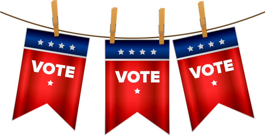 Make sure to cast your ballot this year! (Source: https://pixabay.com/illustrations/election-2020-vote-bunting-usa-5102700/)