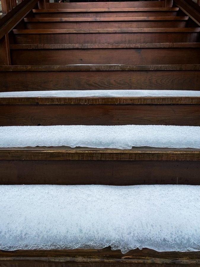 Averill Snow 4