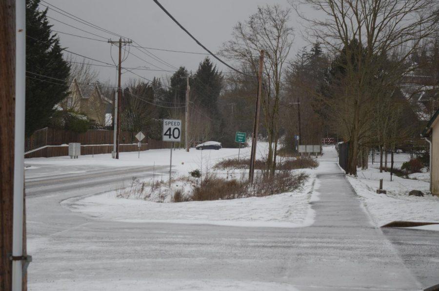 Shaffer Snow 3