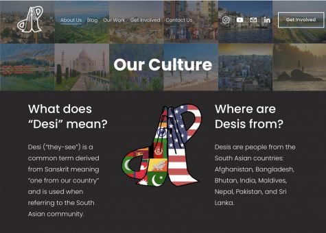 An in-depth description of the background of the Desi Project which can be found on their website.